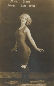 Miss Sadie Premier Lady Diver